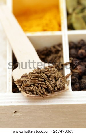 macro shot fennel seeds, aromatic spice in a wooden spoon - stock photo