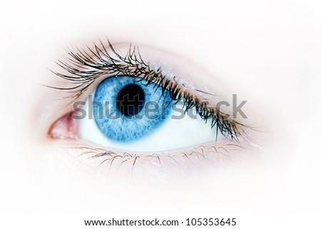 Macro shot of a beautiful blue eye - stock photo