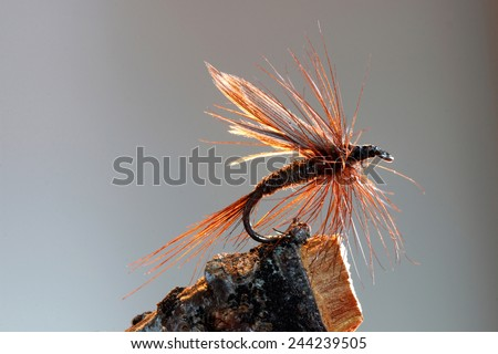 Macro shot of a brown dry fly fishing lure - stock photo