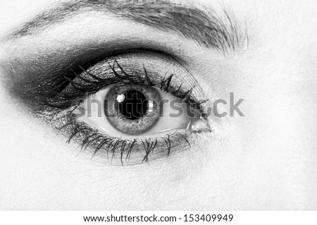 macro shot of a female eye with fashion make-up