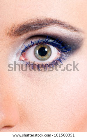 macro shot of a funny female eye with fashion make-up