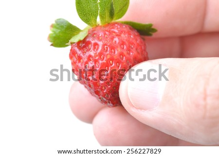 Macro shot of a hand holding a strawberry on white - stock photo