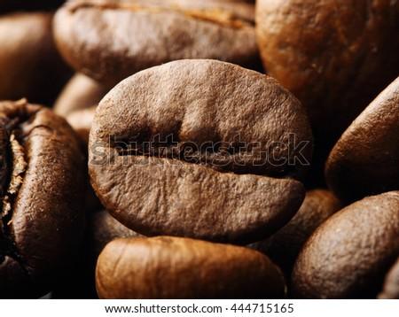macro shot of a roasted coffee bean - stock photo