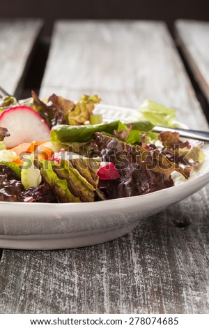 Macro shot of a vintage plate with an Italian chopped green garden salad on an old barn wood table - stock photo