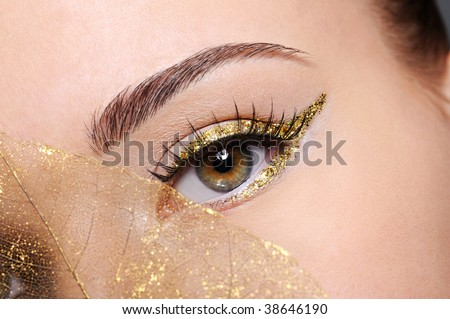Macro shot of beauty  female eye with golden eyeliner make-up covered artificial yellow  leaf