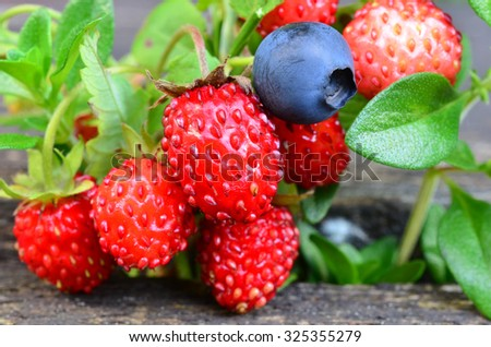 Macro shot of blueberry, wild strawberries and wild thyme on old oak table - stock photo