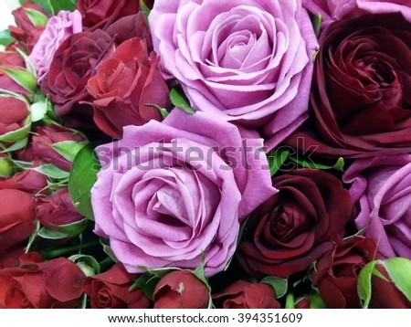 Macro shot of bouqete with rose and red flowers - stock photo