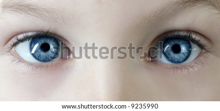 macro shot of children's blue eyes