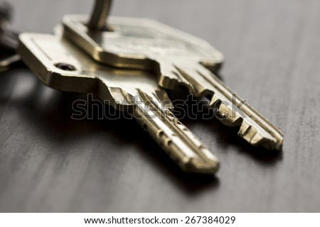 Macro Shot of Conceptual House Keys on Top of Wooden Table - stock photo
