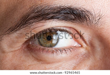 Macro shot of man's green eye - stock photo