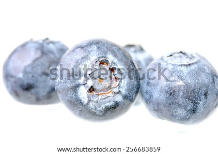 Macro shot of several blueberries on a white background - stock photo