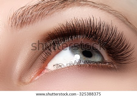 Macro shot of woman's beautiful eye with extremely long eyelashes. Sexy view, sensual look. Female eye with long eyelashes - stock photo