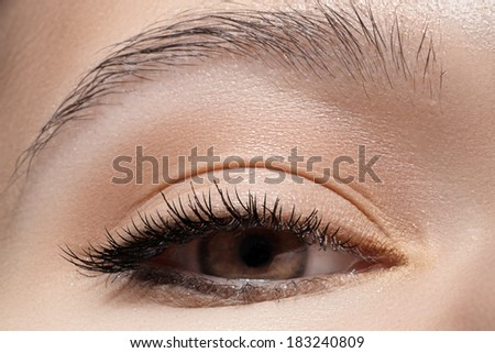Macro shot of woman's beautiful eye with extremely long eyelashes. Sexy view, sensual natural look. Perfect eyebrows - stock photo