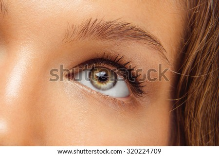 Macro Shot of Young European Woman's Beautiful Eye. Elegance CloseUp of Female Eye with Classic Brown Smoky Eye MakeUp and Liner. Beauty, Cosmetics and Makeup. Brown Eyeshadow on Eyelid.