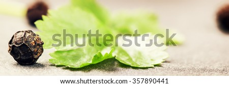 Macro shot with pepper grains and cilantro leaf. Cooking concept with copy space - stock photo