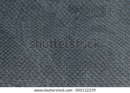 macro texture of gray snakeskin studio - stock photo