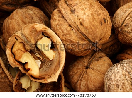 macro view of walnut - stock photo