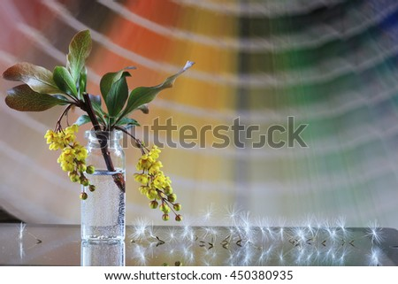 macro yellow flower barberry in a small bottle and dandelion seeds on the blurred background color guide