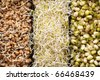 macrobiotic food - stock photo