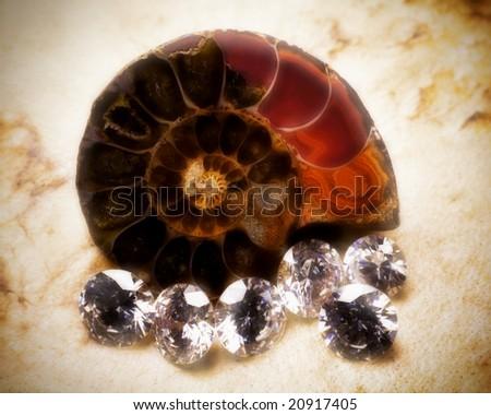 Madagascar Ammonite and Diamonds - stock photo