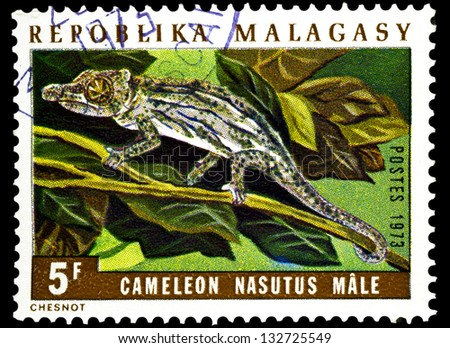 "MADAGASCAR - CIRCA 1973: A stamp printed in Madagascar shows Chameleon Nasutus male, with the same inscription, from the series ""Chameleons"", circa 1973"