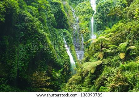 Madakaripura Waterfall ??- Deep Forest Waterfall in East Java, Indonesia - stock photo
