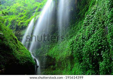 Madakaripura Waterfall-Deep Forest Waterfall in East Java, Indonesia - stock photo