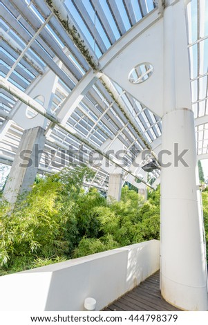 "MADRID, SPAIN - JUNE 19, 2016: interior view of the specifically designed ecologic greenhouse named ""Cold Heater"" or ""Estufa Fría"" in Spanish, with its garden and placed at an open public park."