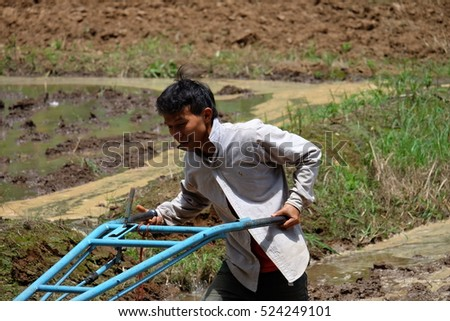 MAE HONG SON, THAILAND,JULY 15, 2016 : Thai Farmer using tiller tractor in rice field in Mae Hong Son,Thailand. on July 15, 2016.