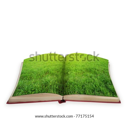 Magic book concept with green grass isolated - stock photo