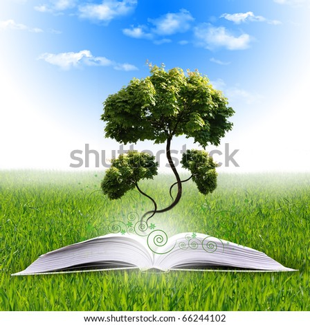 magic book   with the lines and lights with green tree - stock photo