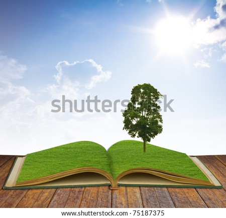 Magic book with Tree growing