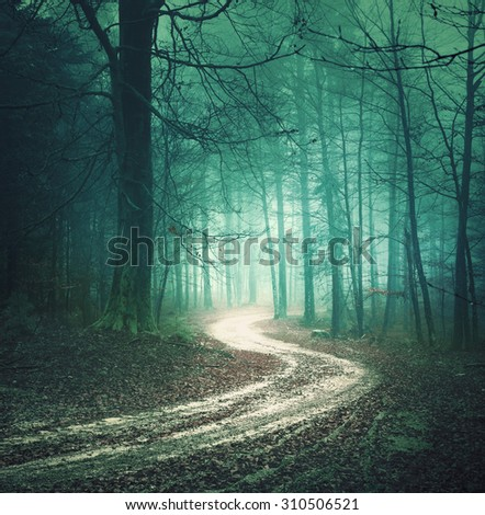 Magic color autumn forest road. Dreamy bllue green colored foggy countryside forest tree with winding road background. Fantasy colored woodland. Color filter effect used. - stock photo