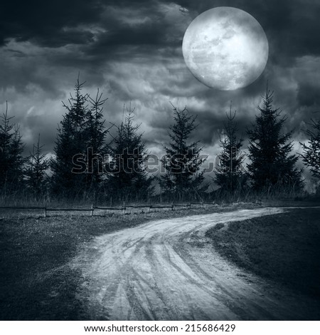 Magic landscape with empty rural road going to pine tree mysterious forest under dramatic cloudy sky at full moon night - stock photo
