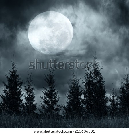 Magic landscape with pine tree forest under dramatic cloudy sky at full moon mysterious night - stock photo