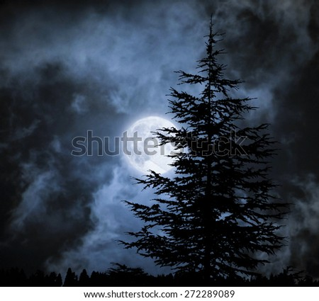 Magic landscape with pine tree  under dramatic cloudy sky at full moon  - stock photo