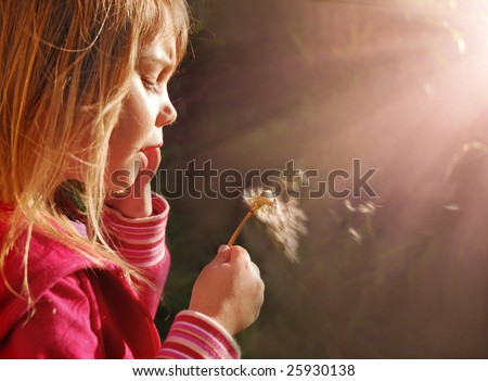 Magic light, little girl blowing dandelion at sunset - stock photo