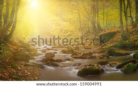 Magic river in forest, autumn landscape - stock photo