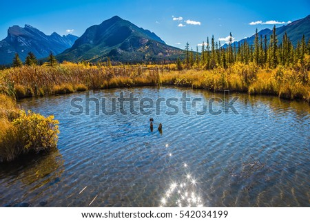 Magic Vermillon lake in the Rocky Mountains of Canada. Solar glare in smooth water.  Concept of active tourism and ecotourism