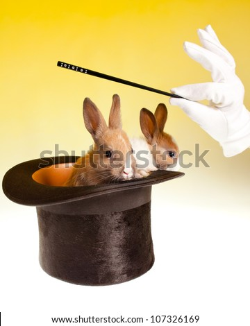 Magic wand and magician's hand with two rabbits coming out of a black top hat - stock photo