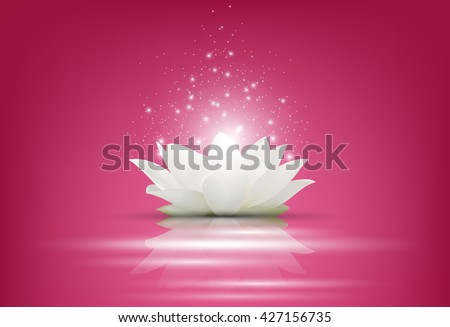 Magic White Lotus flower on pink background - stock photo