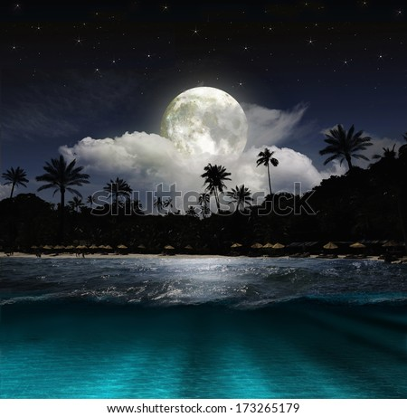 Magical evening on the ocean and the moon  - stock photo