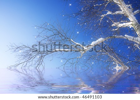 Magical winter with photo of white birch tree dipped slightly into waters reflecting its image with added little stars for the mystic feeling