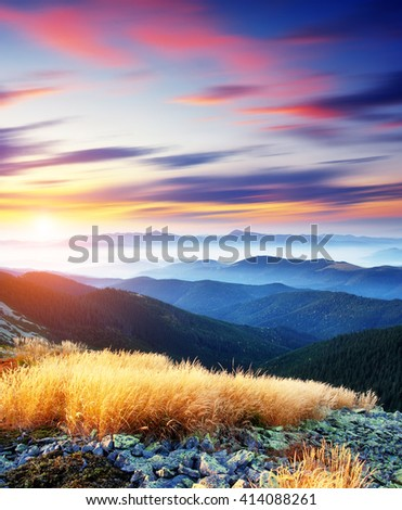 Magical yellow dry grass glowing by sunlight at twilight. Dramatic picture and picturesque scene. Location place Carpathian national park, Ukraine, Europe. Beauty world. Warm toning, soft effect. - stock photo