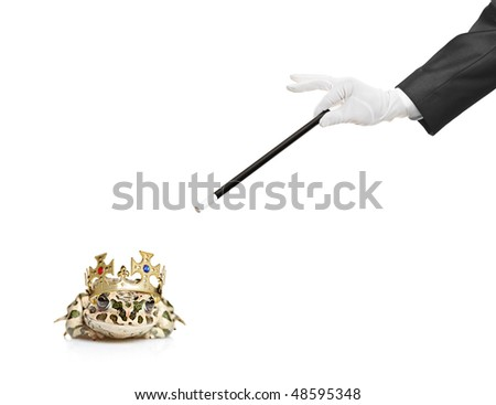 Magician holding a magic wand and a frog isolated on white background - stock photo
