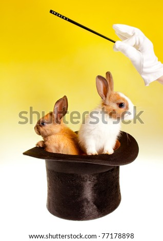 Magician with magic wand with two rabbits in a top hat - stock photo