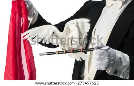 Magician with turtle doves isolated on a white background - stock photo