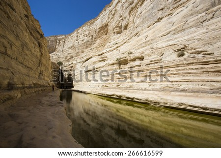Magnificent canyon, creek and picturesque waterfall. Ein Avdat National Park in the Negev desert - stock photo