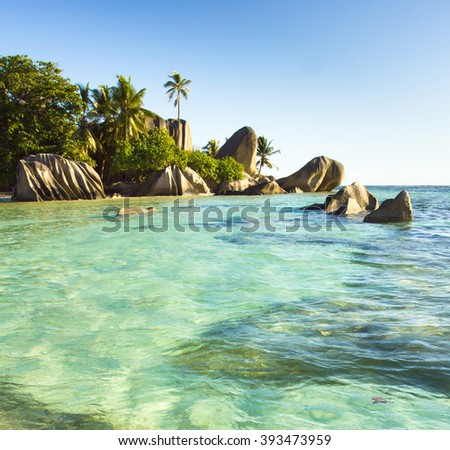 Magnificent Seychelles Boulder Composition