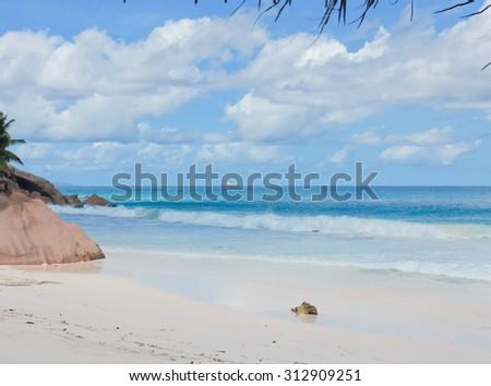 Magnificent Seychelles LaDigue Stones  - stock photo